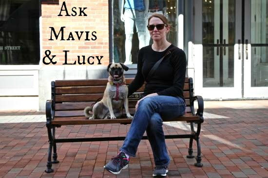Ask Mavis – Canadian Comedy, Moving Across the Country, Interior Designers and More