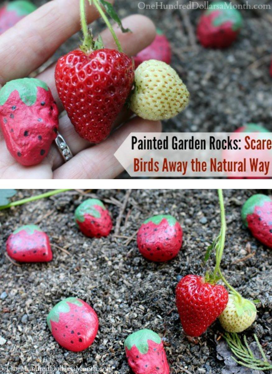 Painted Garden Rocks: Scare Birds Away the Natural Way