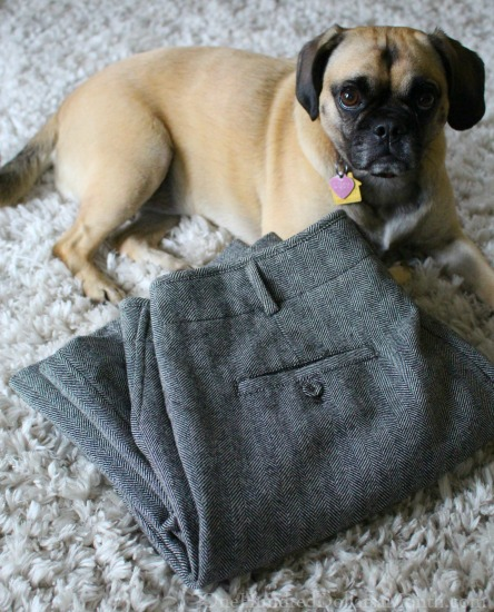 Wool Clothing, Good Ol' Freda, Heirloom Tomatoes and Lucy Puggle