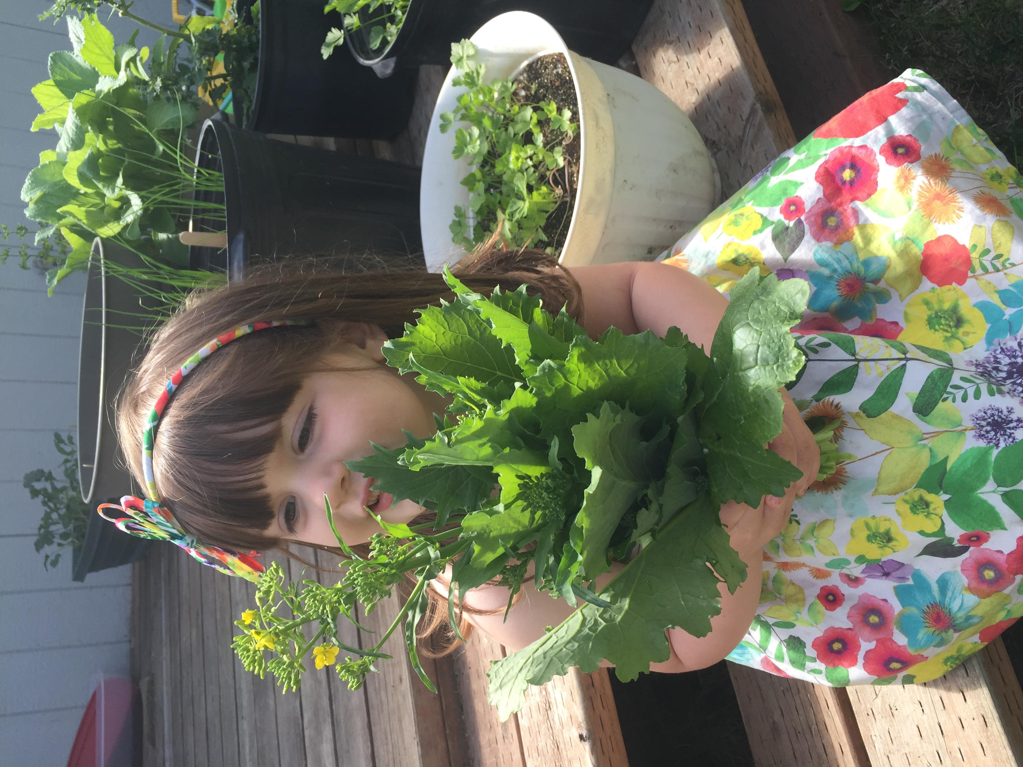 Mavis Mail – Kelly From Wasilla, Alaska Sends in Her Garden Photos