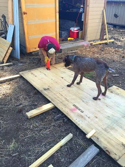 Vanessa Shares How Lots of People's' Trash Made a Cute Coop for Her Ducks