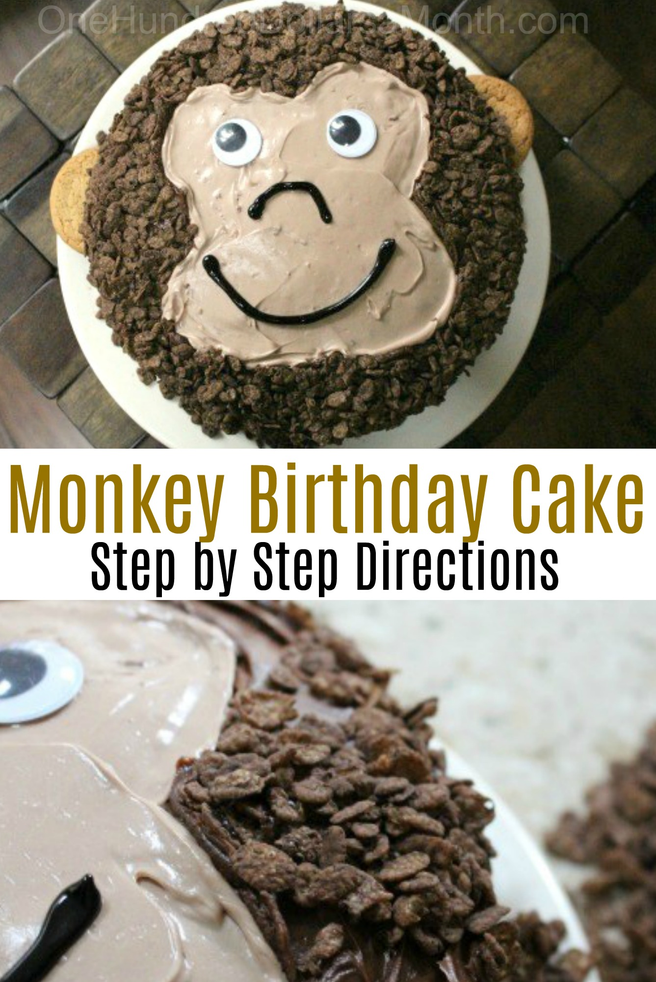 A Birthday Cake for Monkey Boy