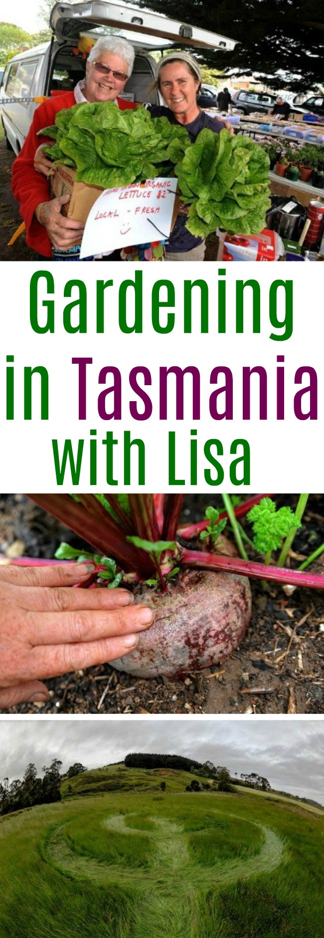 Lisa From Tasmania Shares Her Garden Photos With Us