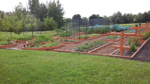 Mavis Mail – Stephanie From Sends in Nestleton Station Ontario, Canada Sends in Her Garden Pictures