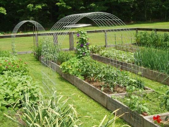 Mavis Mail – Linda From Upstate New York Sends in Her Garden Photos