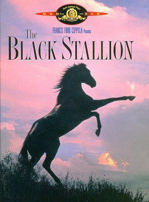 Friday Night at the Movies – The Black Stallion
