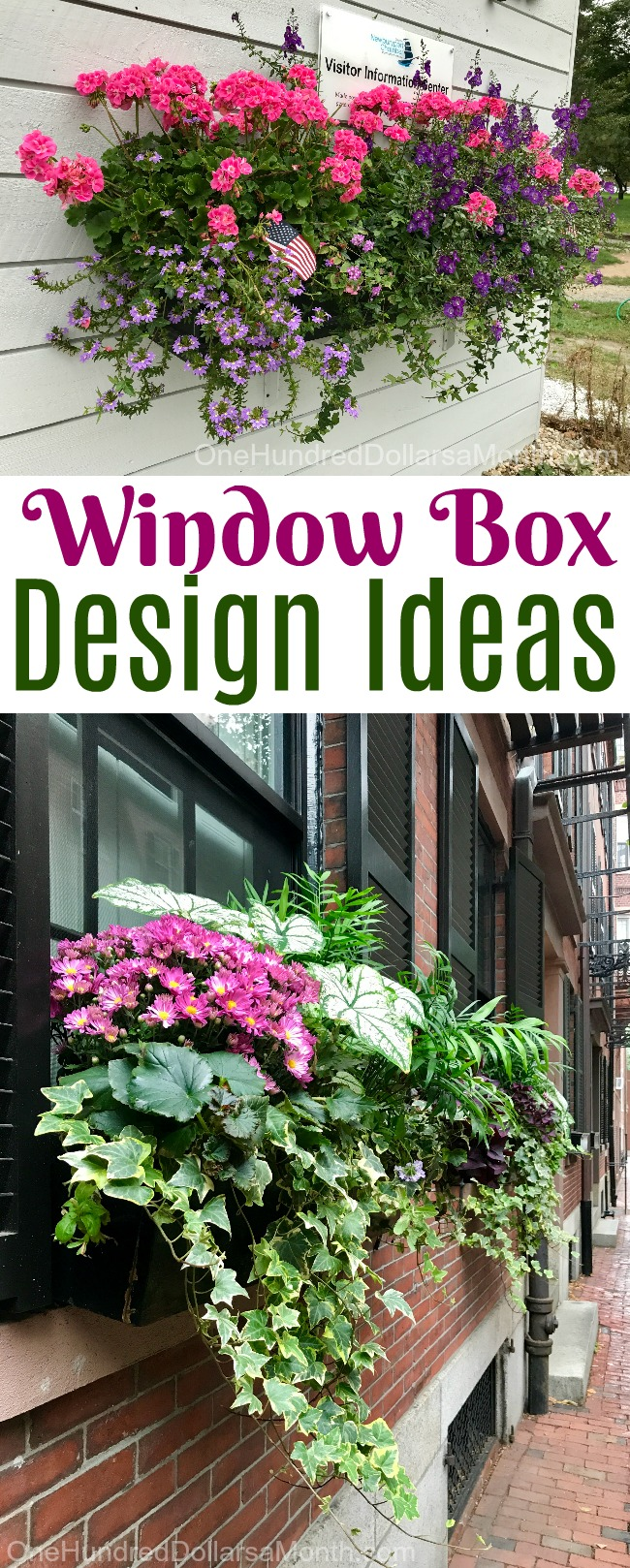 Beautiful Window Box Design Ideas from the Northeast