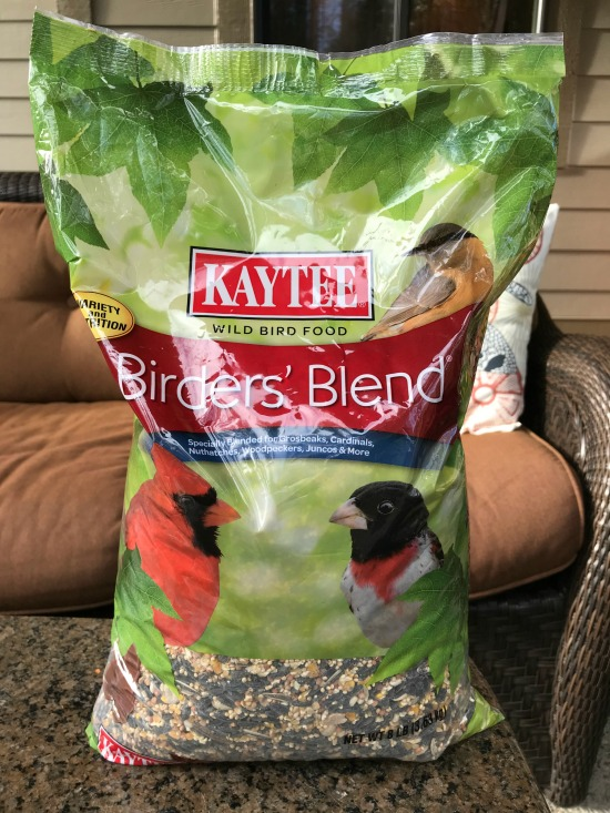 How to Attract Birds to Your Backyard {& Feed Them Right w/ Kaytee Bird Feed}