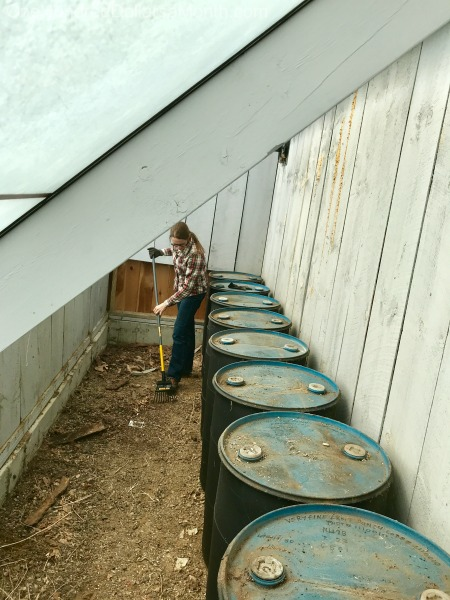 Gardening in New England – Starting Seeds, Cleaning Out the Greenhouse and Finding Treasures