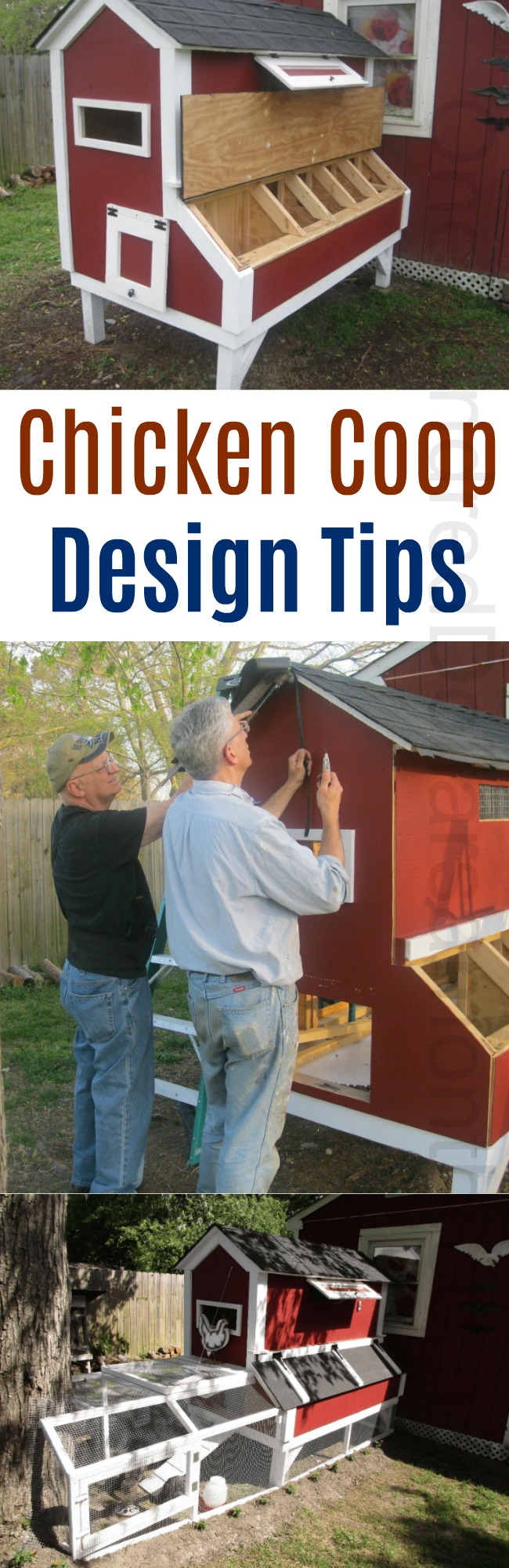 Mavis Mail – Bruce From Norfolk, VA Sends in His Chicken Coop Photos and Lot's of Building Tips