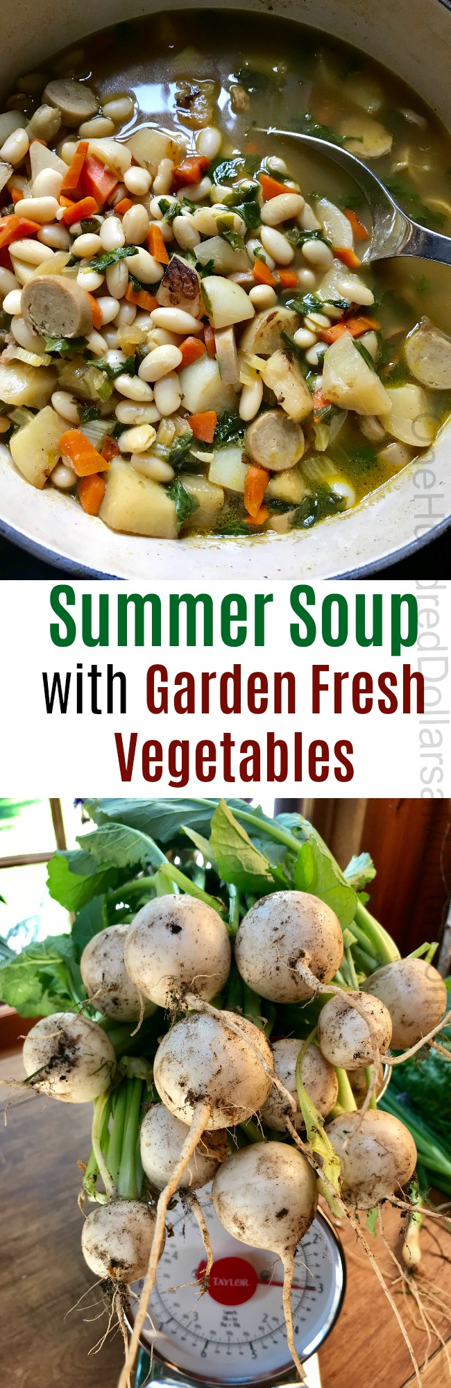 Summer Soup with Garden Fresh Turnips, Swiss Chard and Carrots