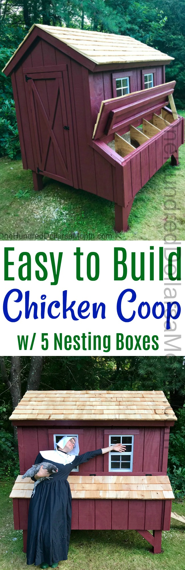 The HH Builds a Chicken Coop for Lucy's Babies