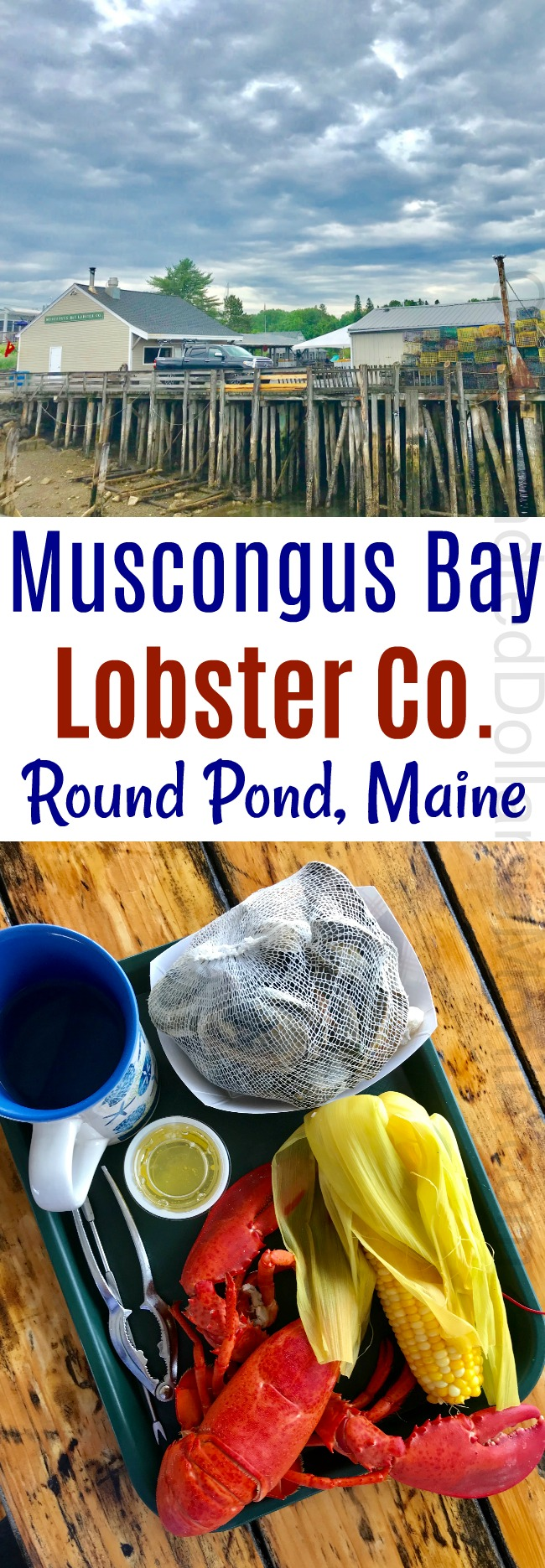 Muscongus Bay Lobster Company – Round Pond, ME