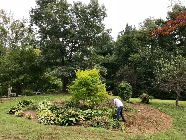 Gardening in New England – I Give Up!