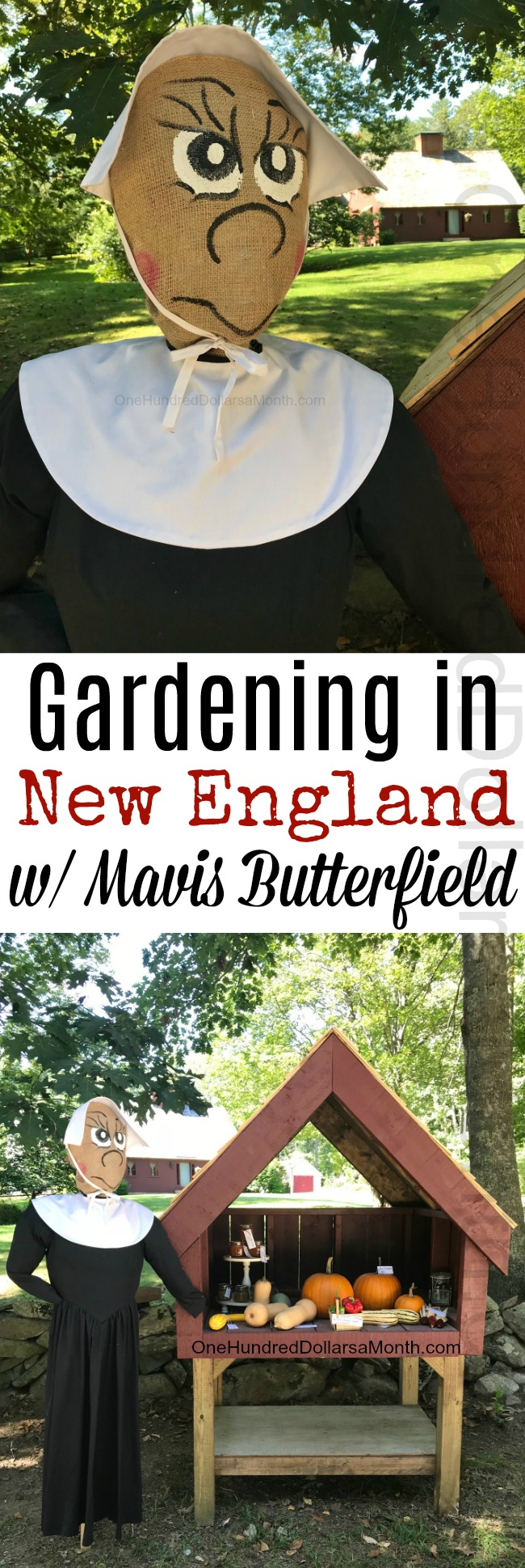 Gardening in New England – New Garden Stand Photos and a Garden Tally Update!