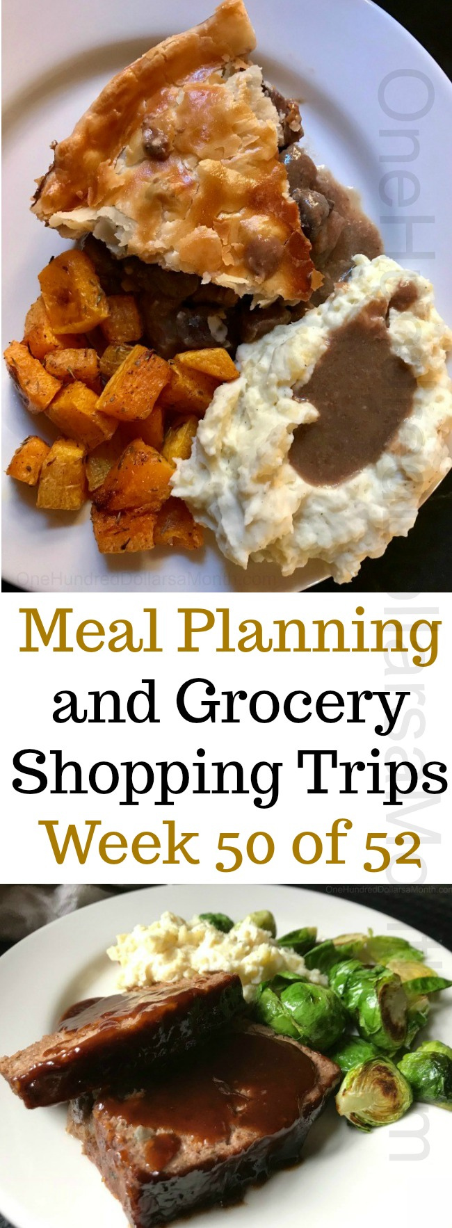 Meal Planning and Grocery Shopping Trips – Week 50 of 52