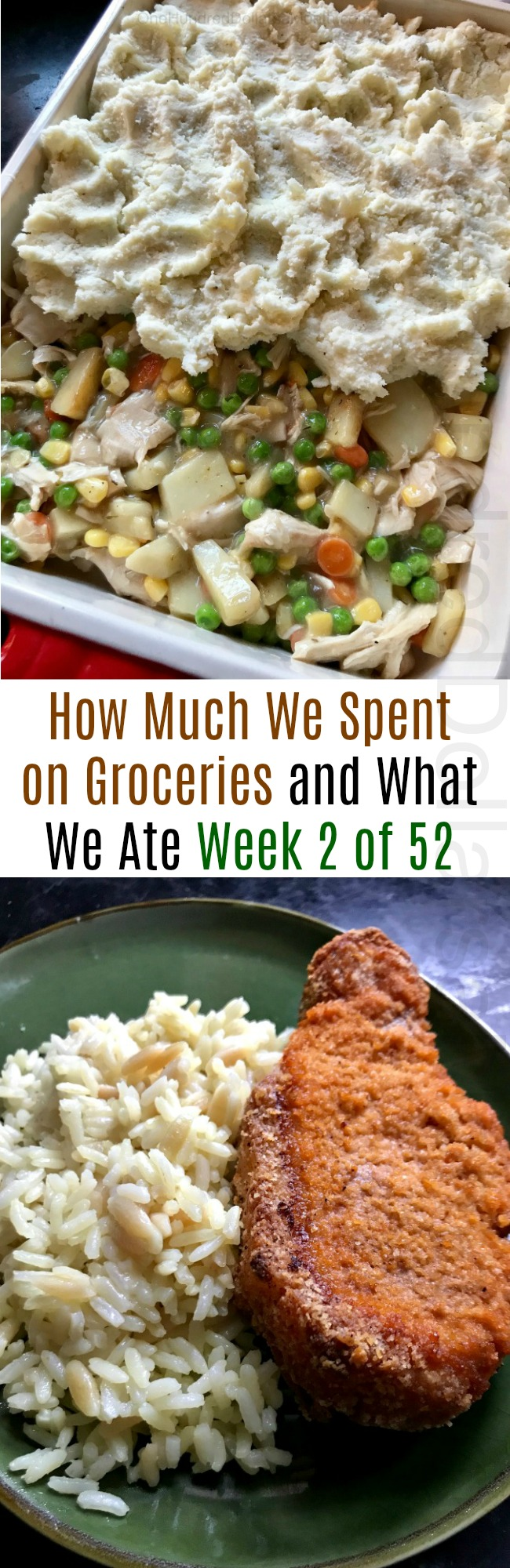 How Much We Spent on Groceries and What We Ate – Week 2 of 52