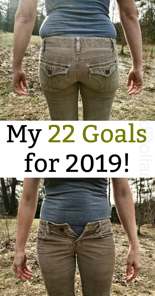 My 22 Goals for 2019!