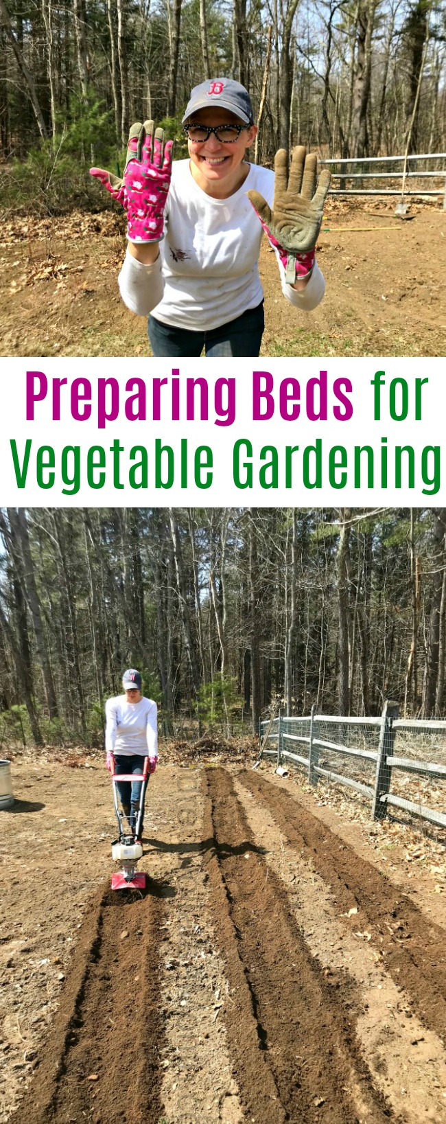 Gardening in New England – Clearing Beds, Tilling Rows and Scratching Like Crazy!