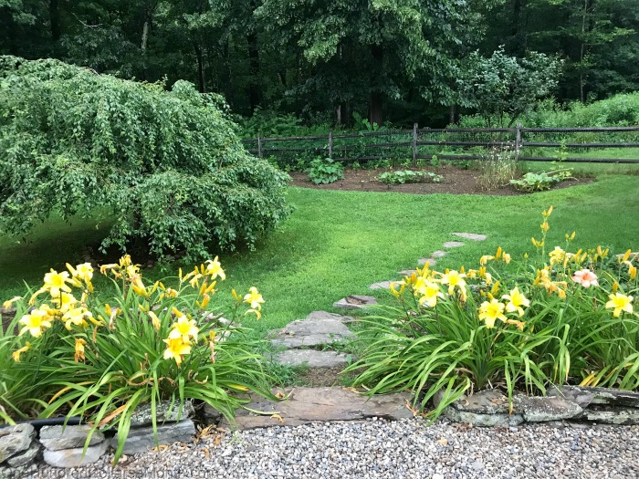 Gardening in New England – August 1st, 2019