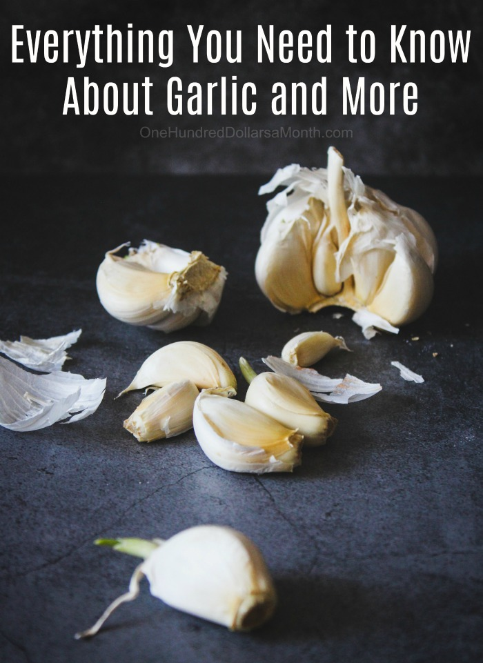 Everything You Need to Know About Garlic and More