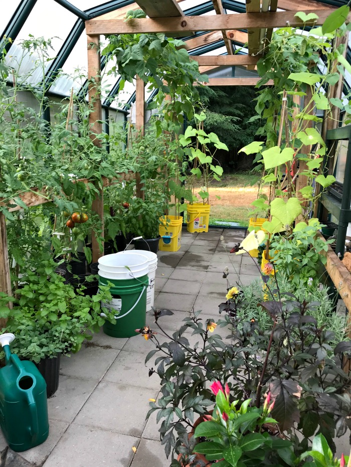 Gardening in Maine – Tidy Cat Buckets, Raised Garden Beds and a Greenhouse