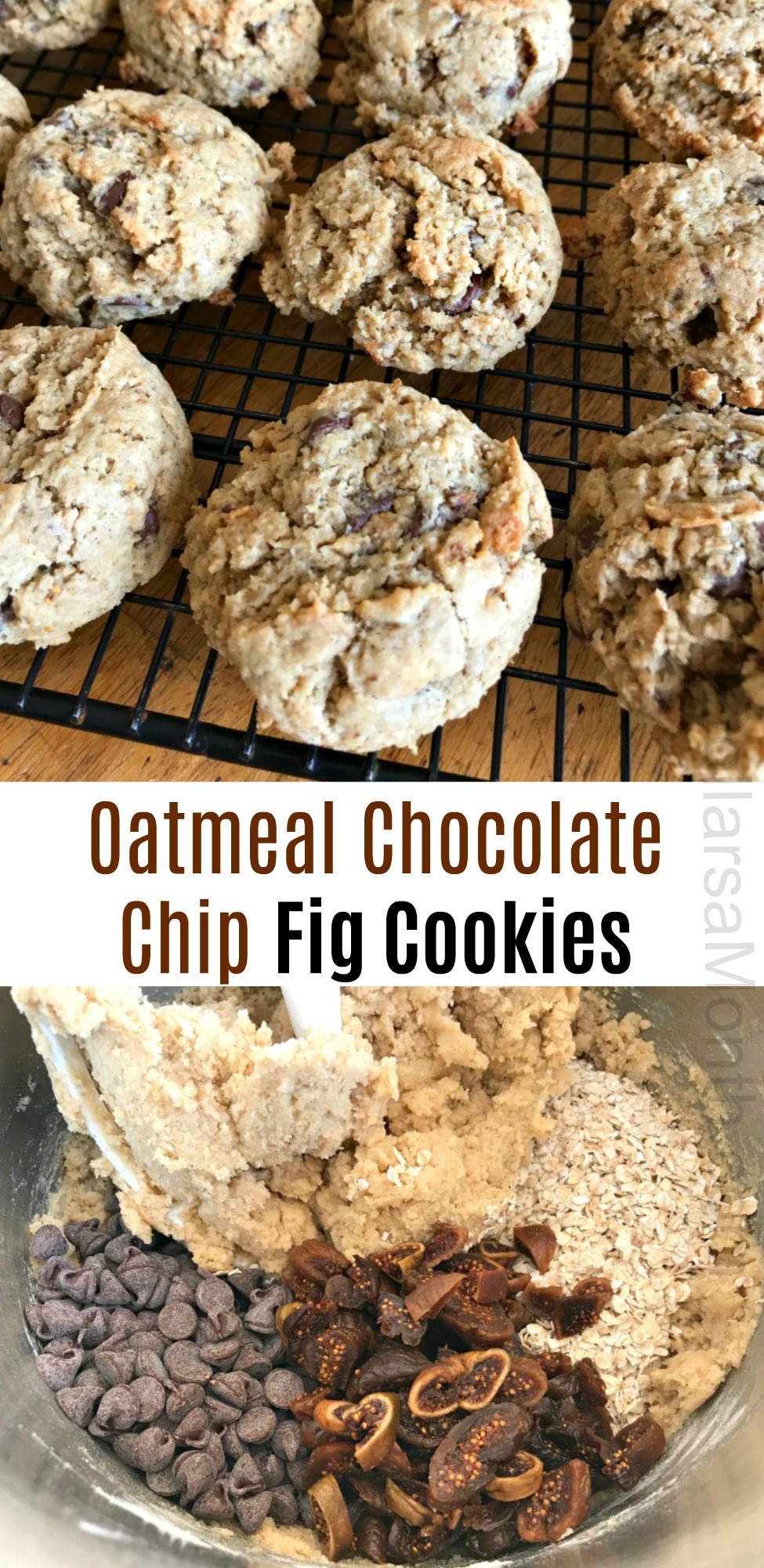 Oatmeal Chocolate Chip Fig Cookies