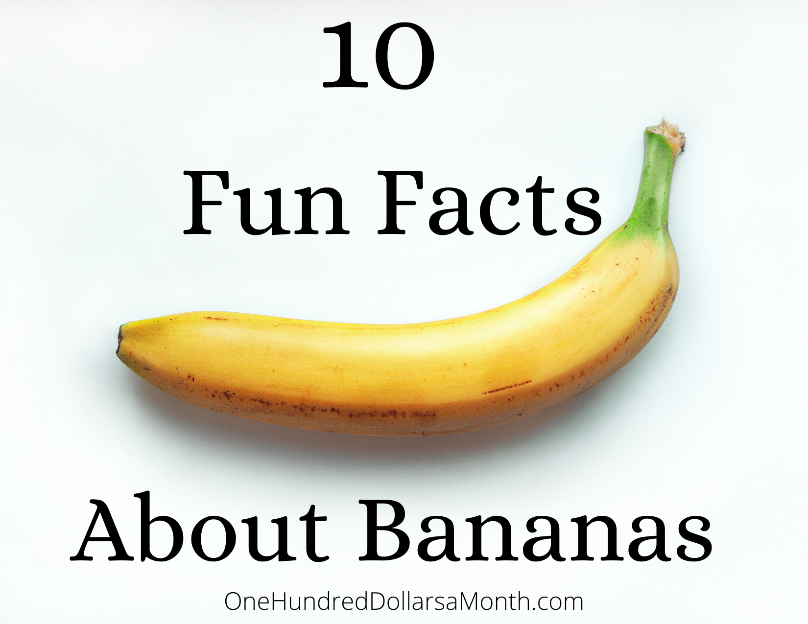 10 Fun Facts About Bananas