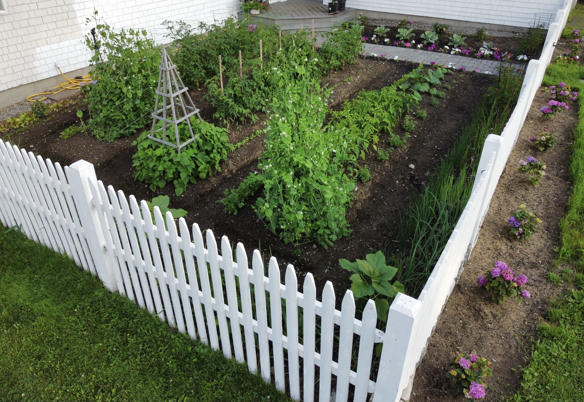 Gardening In Mid Coast Maine – Planting Zone 6a – Early July