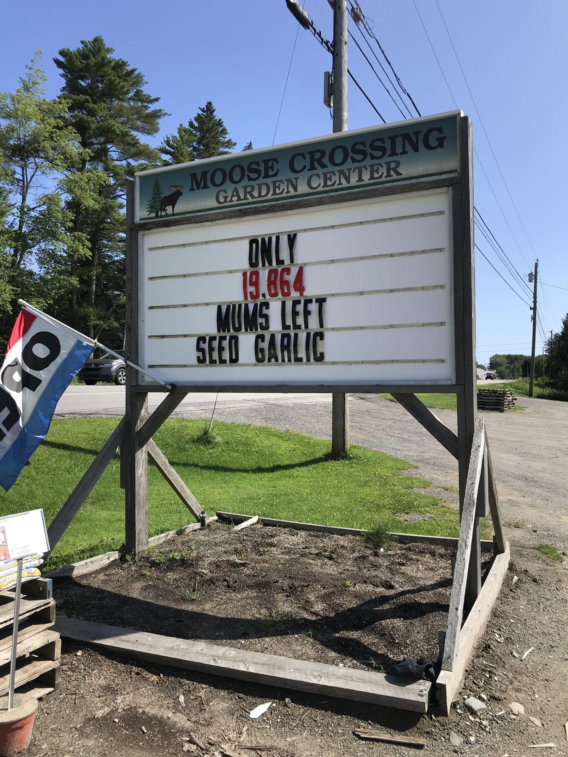 Moose Crossing Garden Center in Waldoboro, Maine